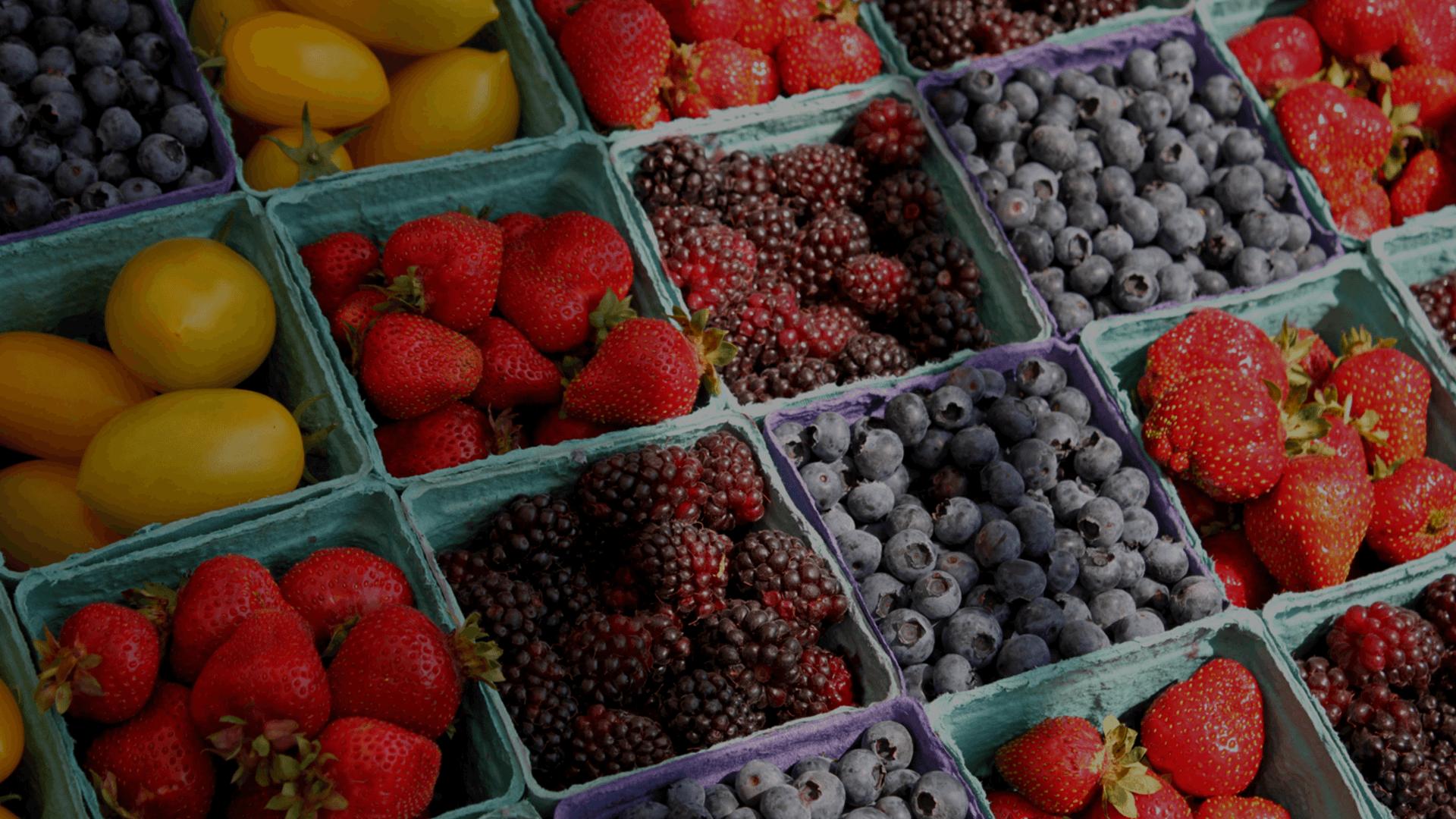 Plant Farm Fruit Berry4